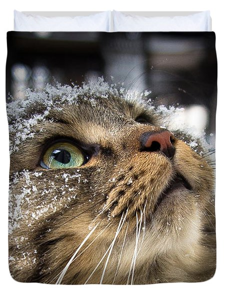Snow Cat Duvet Cover