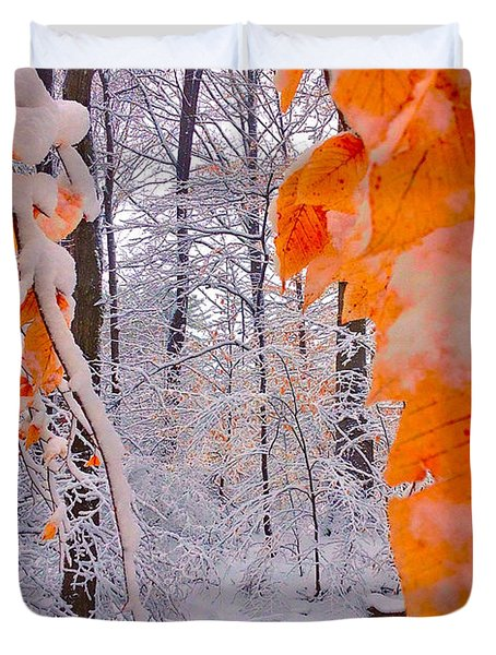 Snow Covered Woods And Stream Duvet Cover