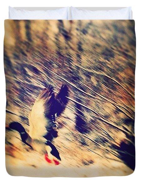 Duck Flown Duvet Cover