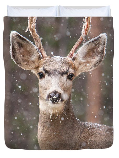Snow Deer 1 Duvet Cover