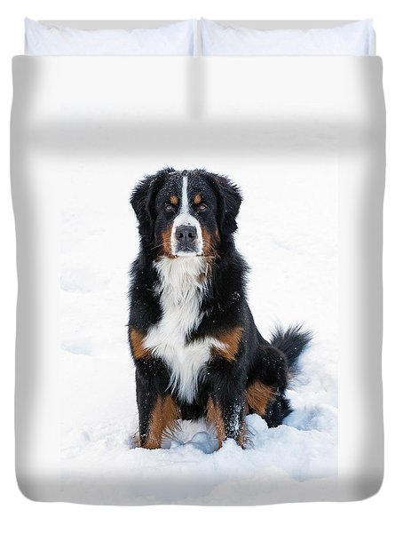 Snow Dog II Duvet Cover
