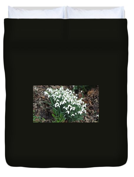 Snow Drops Duvet Cover by John Williams