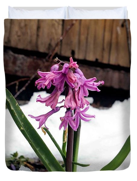 Snow Flower Duvet Cover by Fiona Kennard