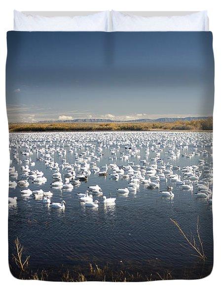 Snow Geese - Bosque Del Apache Duvet Cover