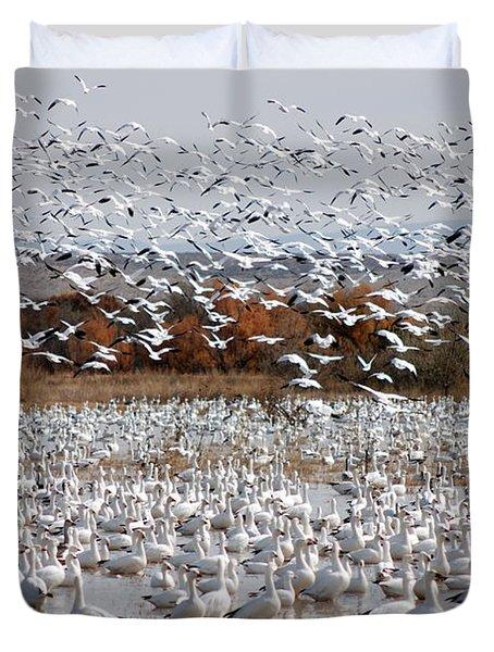 Snow Geese No.4 Duvet Cover