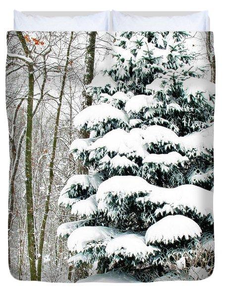 Snow In Ohio Duvet Cover by Joan  Minchak