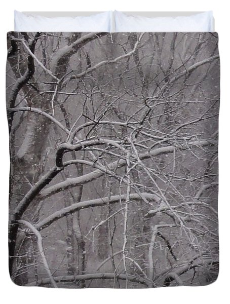 Snow In The Trees At Bulls Island Duvet Cover