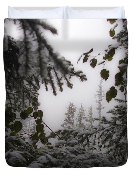 Snow In Trees At Narada Falls Duvet Cover