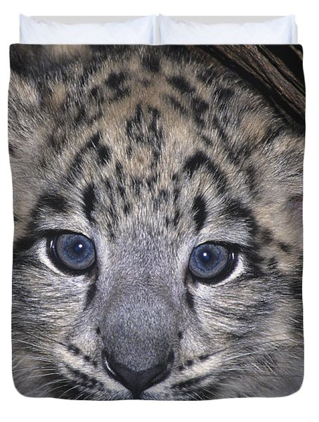Duvet Cover featuring the photograph Snow Leopard Cub Endangered by Dave Welling