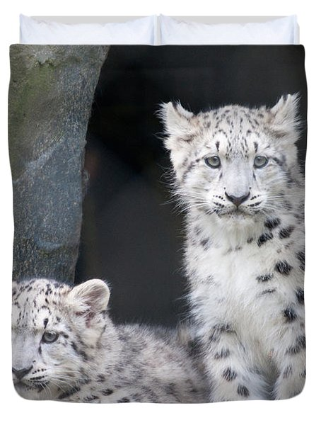 Snow Leopard Cubs Duvet Cover