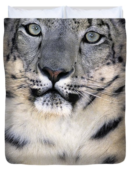 Duvet Cover featuring the photograph Snow Leopard Portrait Endangered Species Wildlife Rescue by Dave Welling