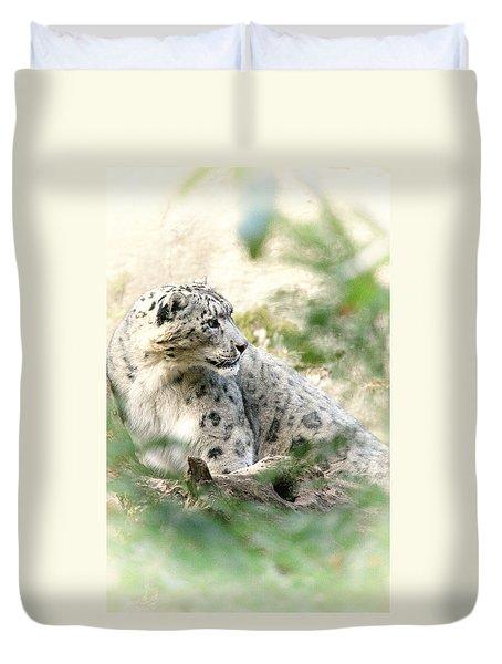 Snow Leopard Pose Duvet Cover by Karol Livote
