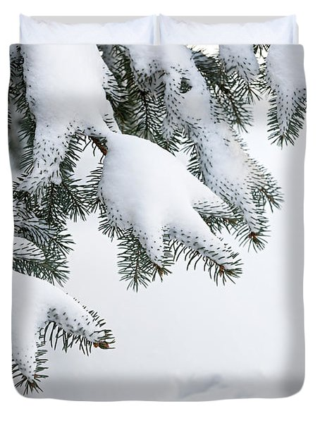 Snow On Winter Branches Duvet Cover by Elena Elisseeva