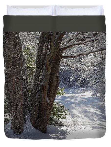 Snow Sparkles Duvet Cover by Dianne Cowen