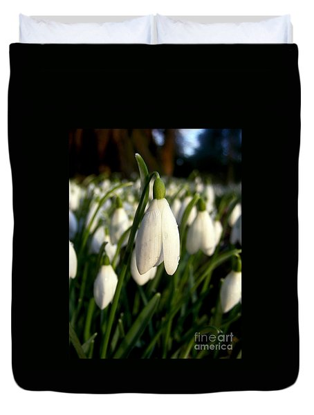 Duvet Cover featuring the photograph Snowdrops by Nina Ficur Feenan