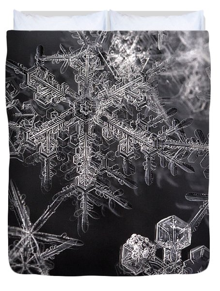 Snowflakes Duvet Cover by Eunice Gibb