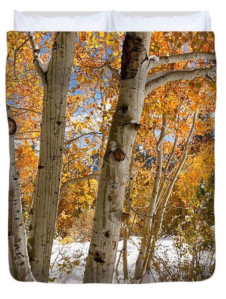 Snowy Aspen Grove Duvet Cover