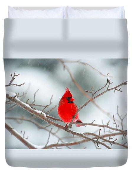 Snowy Cardinal Duvet Cover