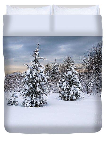 Snowy Dawn Duvet Cover by Deborah  Bowie