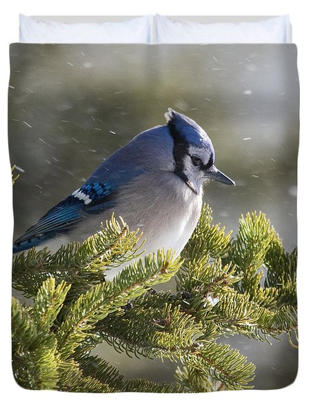 Snowy Day Blue Jay Duvet Cover