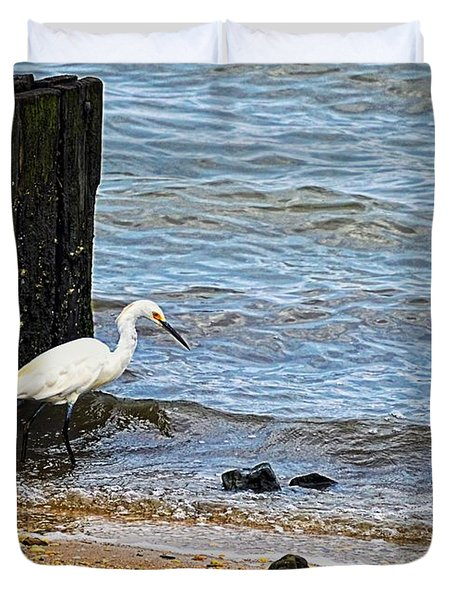 Snowy Egret At The Shore Duvet Cover