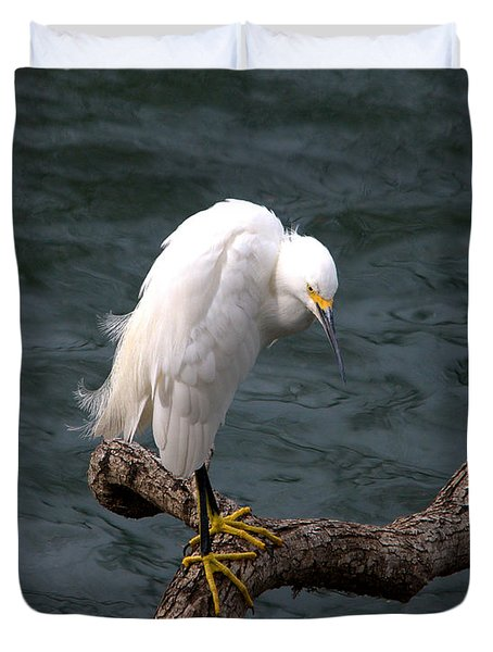 Snowy Egret Out On A Limb Duvet Cover