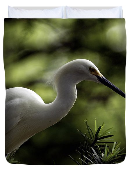 Duvet Cover featuring the photograph Snowy Egret by Travis Burgess