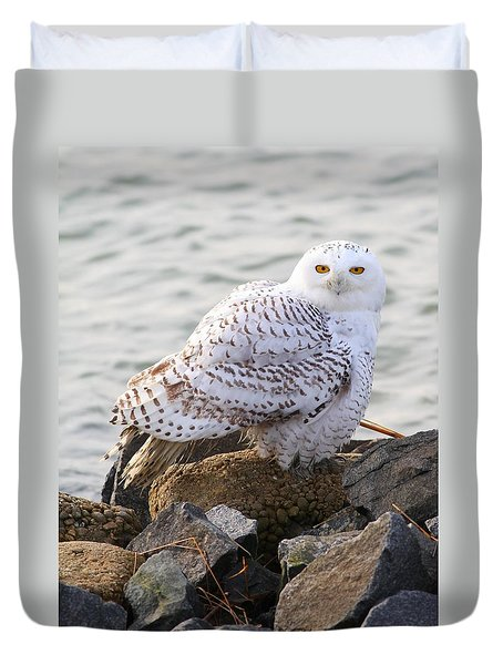 Snowy Owl In New Jersey Duvet Cover