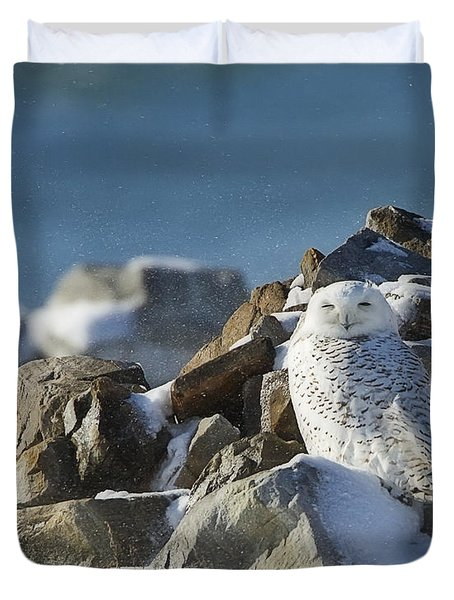 Snowy Owl On A Rock Pile Duvet Cover