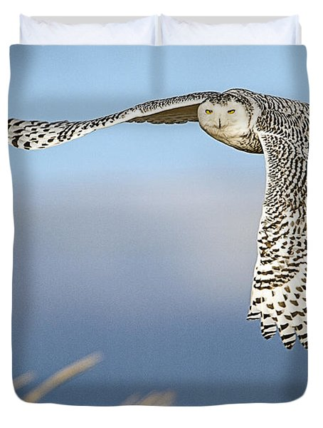 Snowy Owl Over The Dunes Duvet Cover
