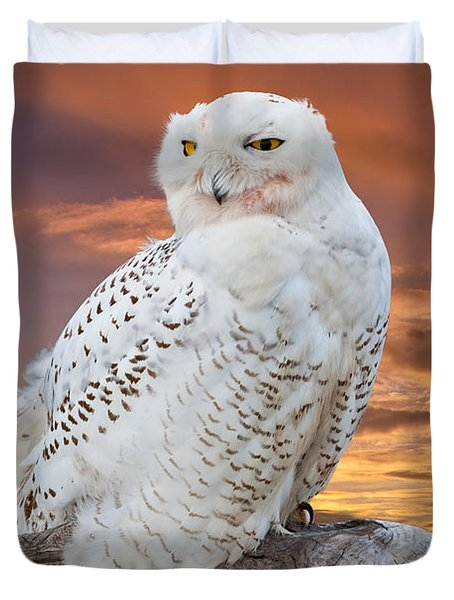 Snowy Owl Perched At Sunset Duvet Cover
