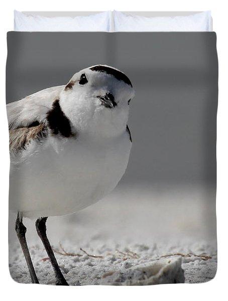 Snowy Plover Duvet Cover
