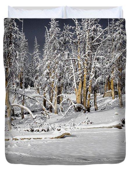 Snowy Silence Duvet Cover by Chris Brannen