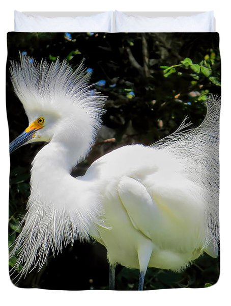 Snowy White Egret Breeding Plumage Duvet Cover