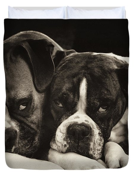 Snuggle Bug Boxer Dogs Duvet Cover by Stephanie McDowell