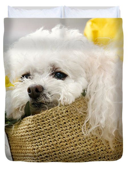 Snuggled Poodle Dog Duvet Cover by Donna Doherty