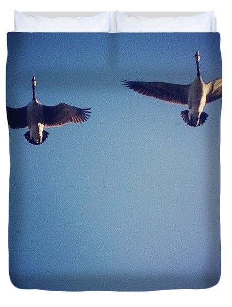 Geese Duvet Cover