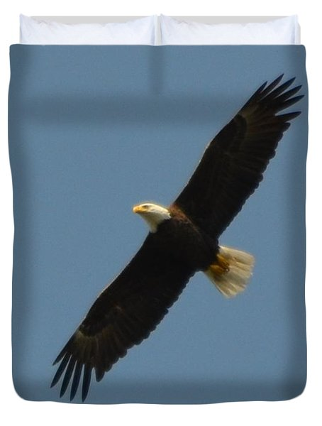 Soaring Bald Eagle Duvet Cover by Jeff at JSJ Photography