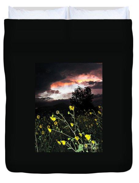 Socorro Sunset Duvet Cover by Steven Ralser