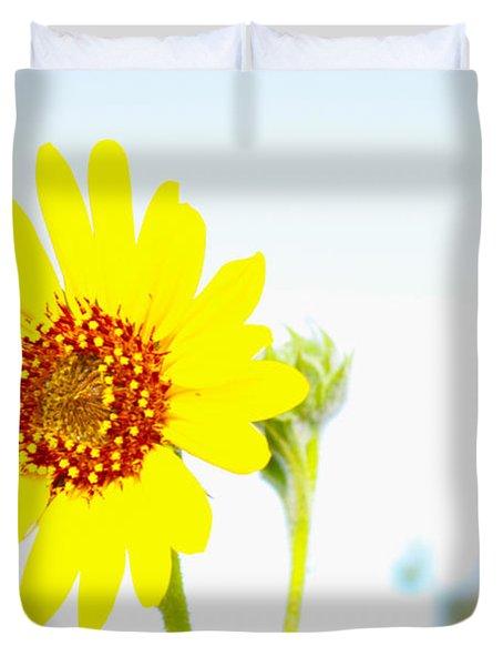 Soft Desert Daisy Duvet Cover by Rich Collins