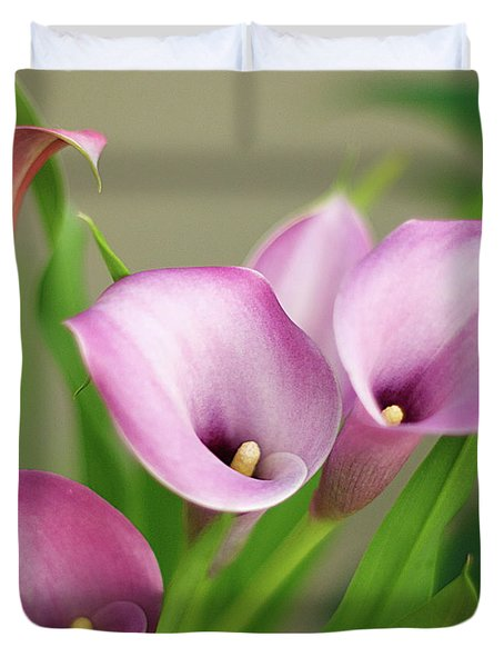 Soft Pink Calla Lilies Duvet Cover by Byron Varvarigos