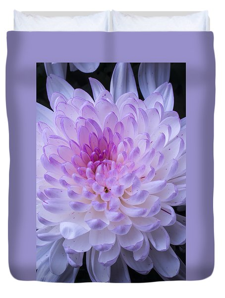 Soft Pink Mum Duvet Cover by Garry Gay