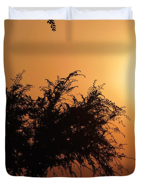 Soft Sunrise Duvet Cover by Meghan at FireBonnet Art