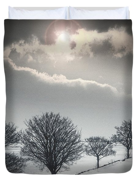 Solitude Of Coldness Duvet Cover