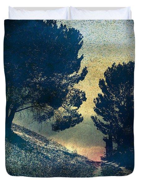 Somber Passage Duvet Cover by Bedros Awak