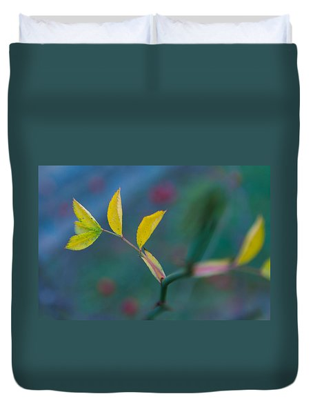 Some Color Duvet Cover by Andreas Levi