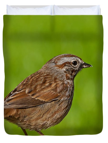 Song Sparrow On A Log Duvet Cover