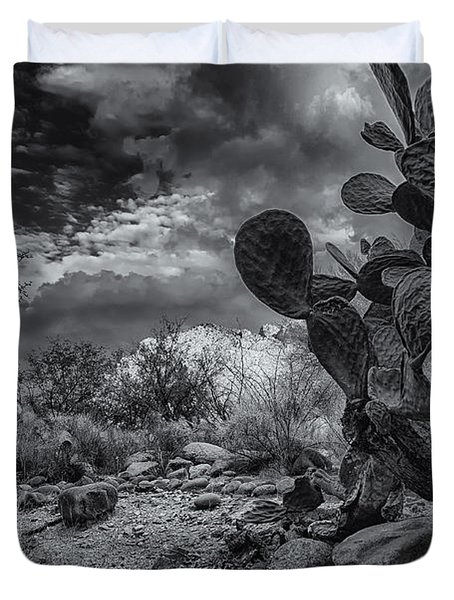 Duvet Cover featuring the photograph Sonoran Desert 15 by Mark Myhaver