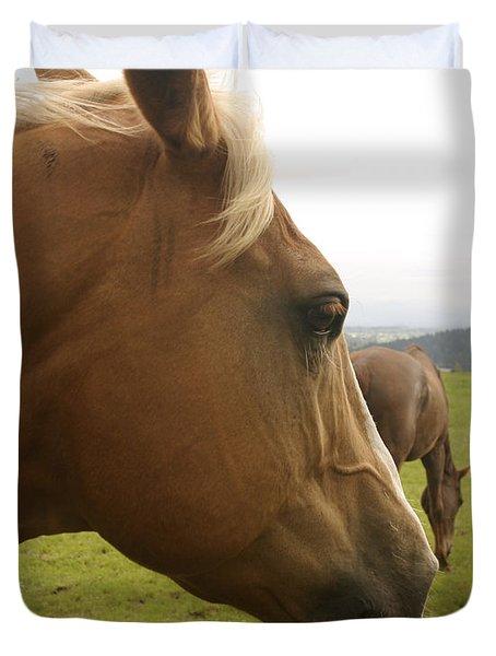 Sorrel Horse Profile Duvet Cover by Belinda Greb