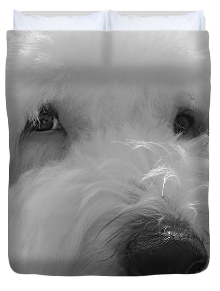 Soulful Eye's Old English Sheep Dog Duvet Cover by Peggy Franz